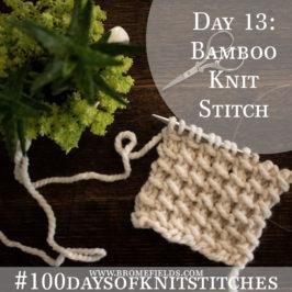 Day 13 : Bamboo Knit Stitch : #100daysofknitstitches
