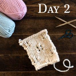 Day 2 : Butterfly Stitch : #100daysofknitstitches