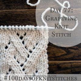 Grapevine Lace Knitting Pattern : Day 82 : Diagonal Steps Knit Stitch ...
