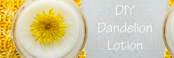 DIY Dandelion Lotion by Brome Fields