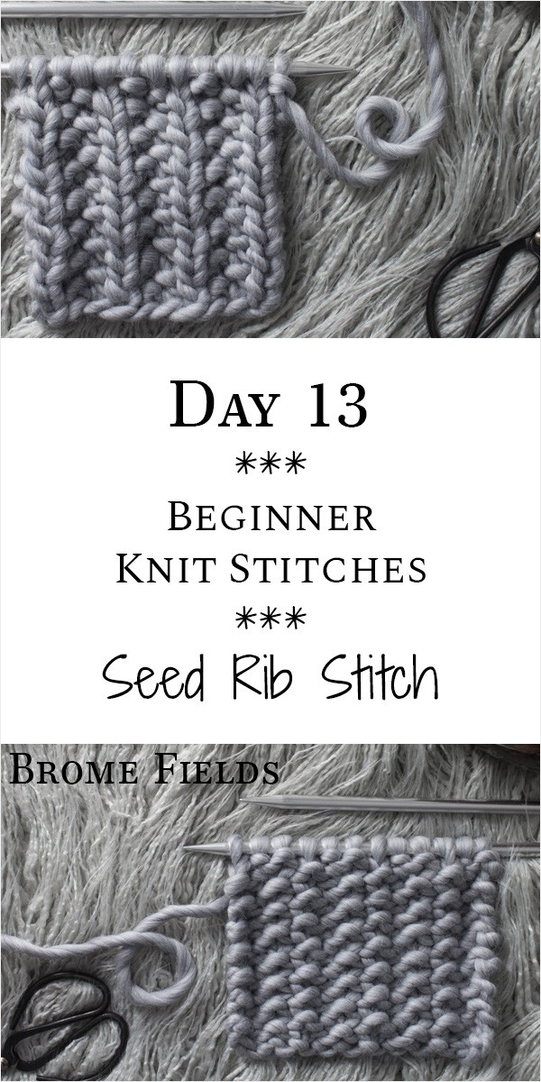 Seed Rib Stitch Knit Stitch : Day 13 of the 21 Days of Beginner Knit Stitches : Brome Fields