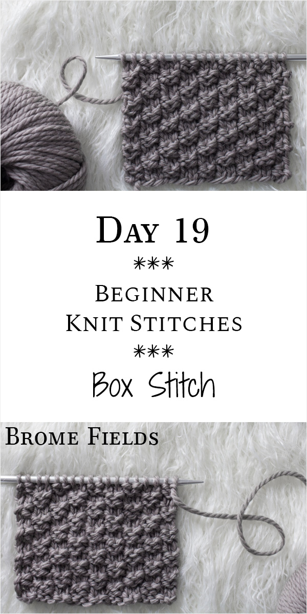Box Knit Stitch : Day 19 of the 21 Days of Beginner Knit Stitches : Brome Fields