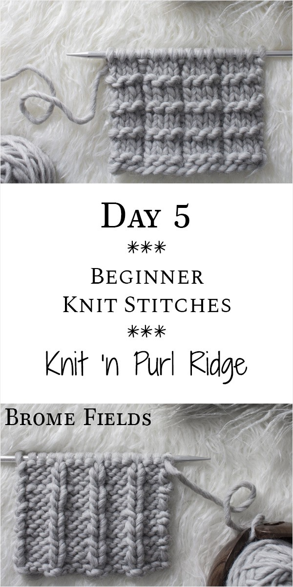 Knit 'n Purl Ridge Knit Stitch : Day 5 of the 21 Days of Beginner Knit Stitches : Brome Fields