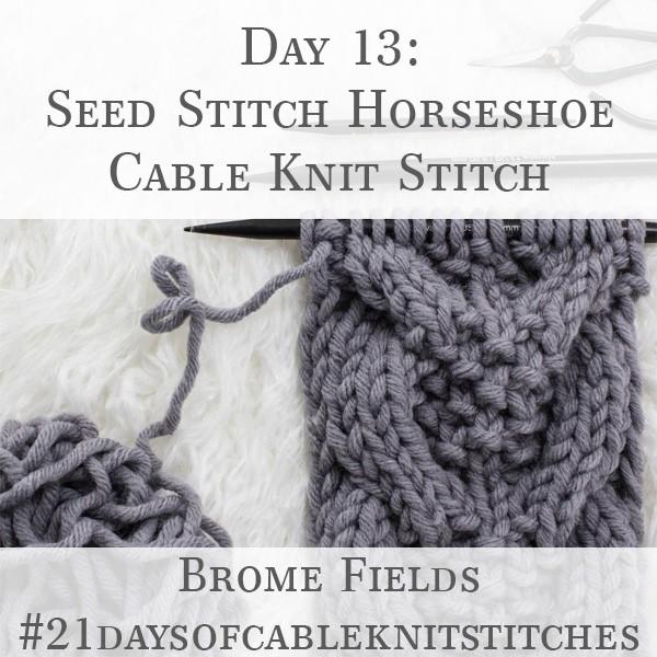 Day 13 : Seed Stitch Horseshoe Cable Knit Stitch : #21daysofcableknitstitches